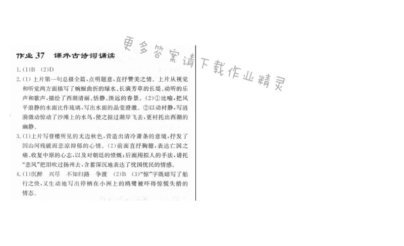 启东中学作业本八年级语文上册人教版 作业37