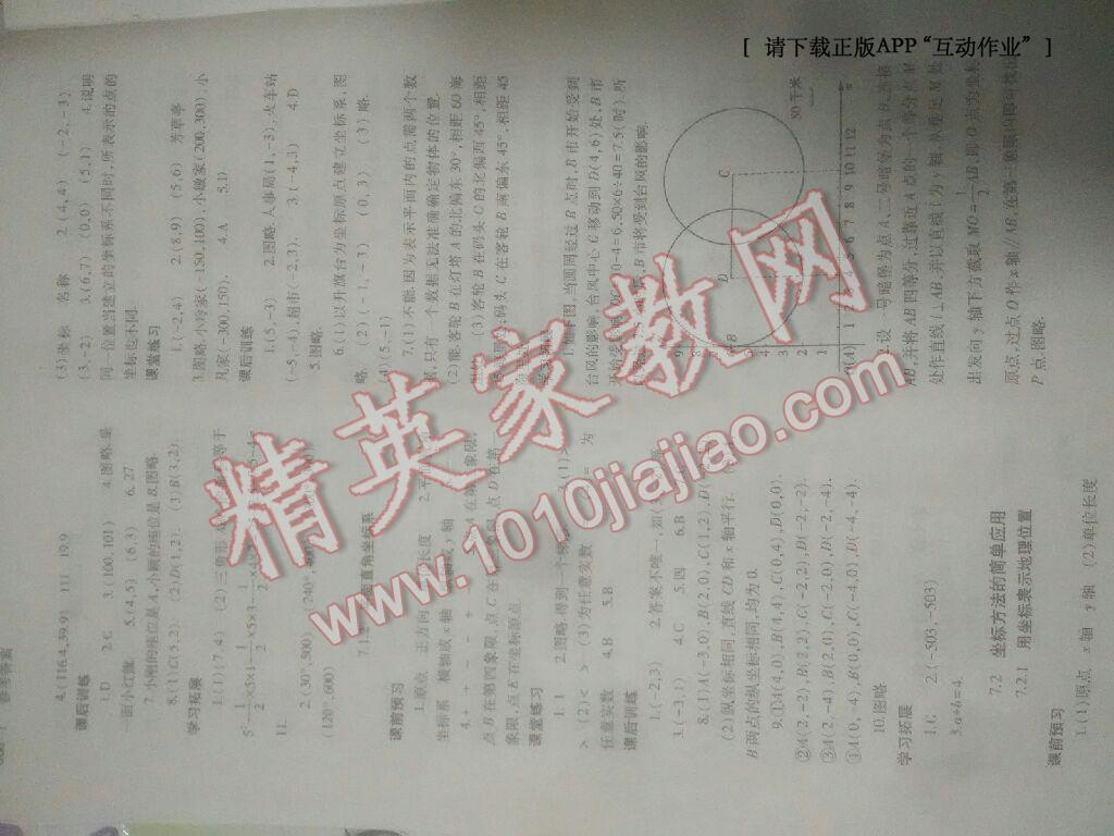 2014年基础训练七年级数学下册人教版仅限河南省内使用大象出版社第18页