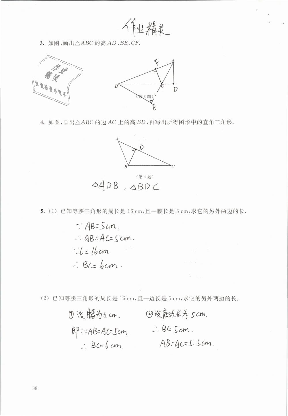 2019年数学练习部分七年级第二学期第38页
