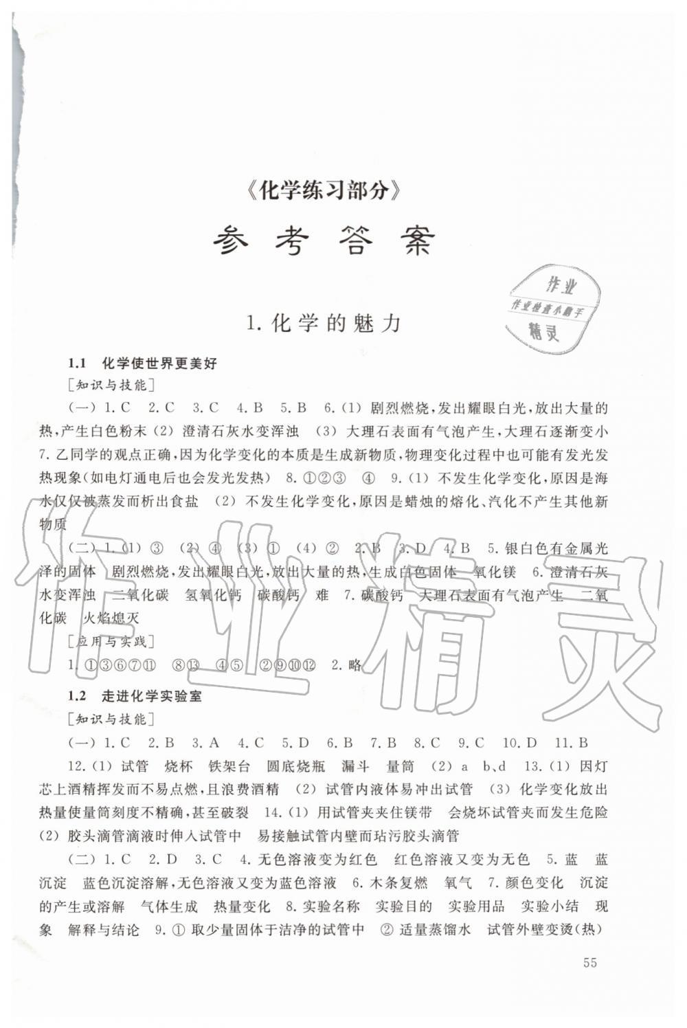 2019年化学练习部分九年级第一学期沪教版第1页