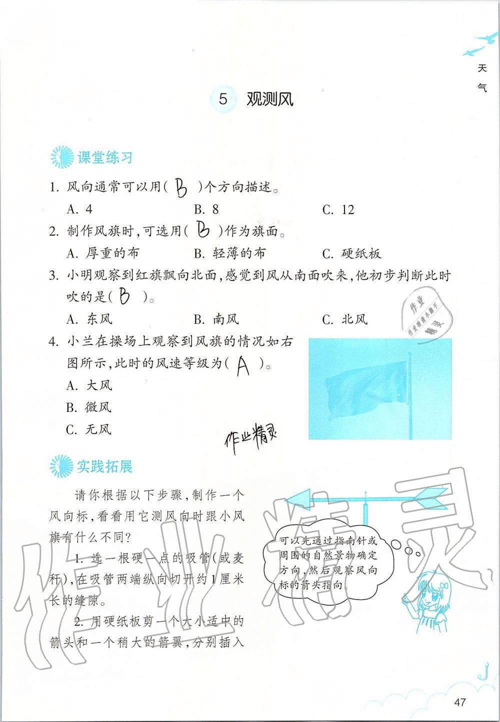 2019年科学作业本三年级上册教科版浙江教育出版社第47页