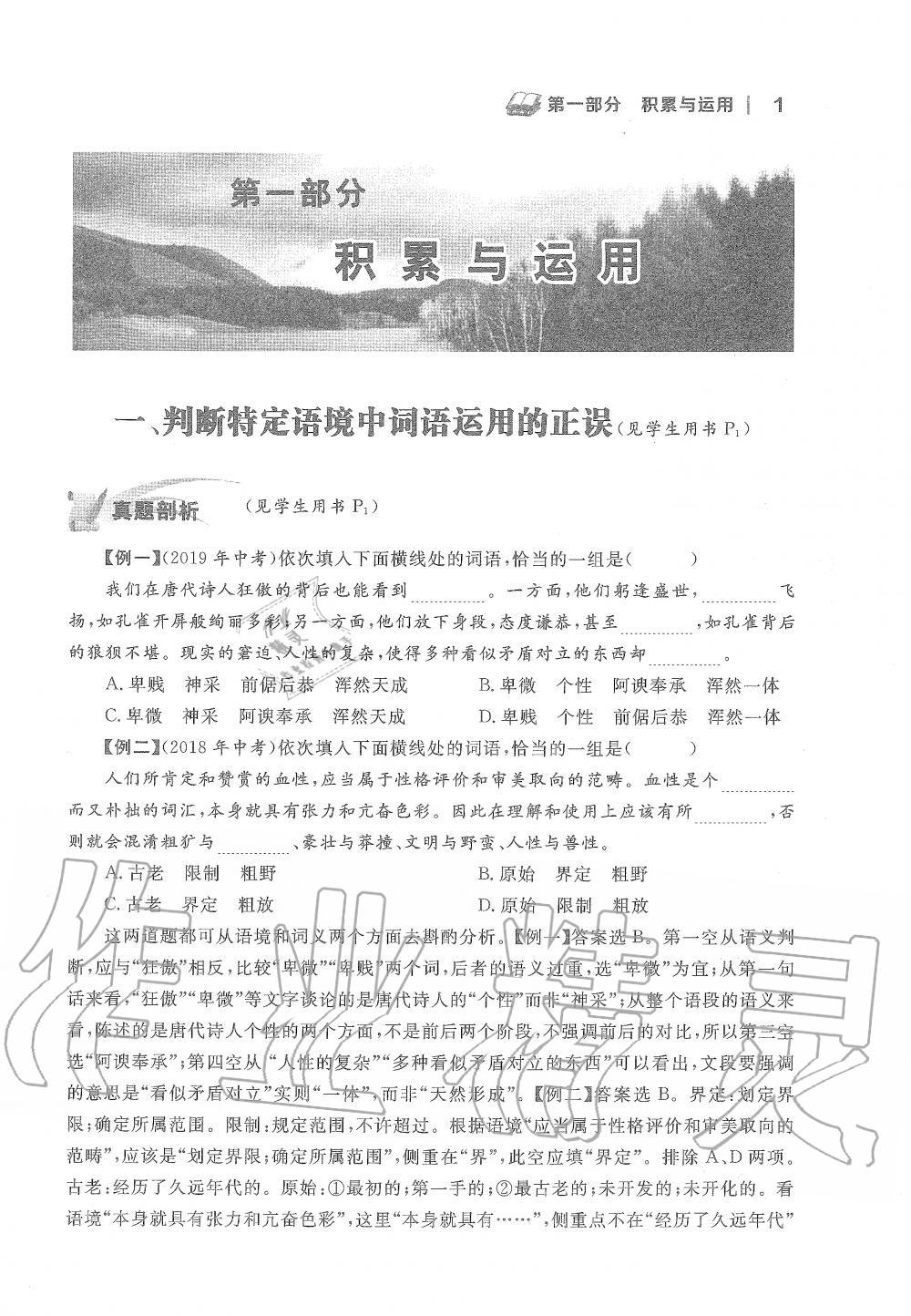 2020年中考语文新视野九年级上册人教版第1页